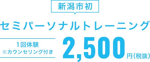 セミパーソナルトレーニング1回体験2,500円(税抜)